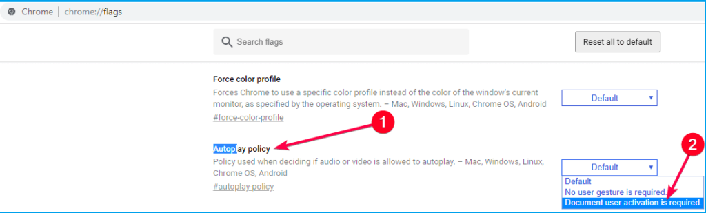 Google Chrome's autoplay setting
